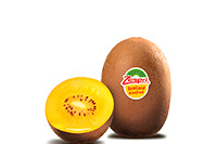 Kiwi Zespri SunGold IT
