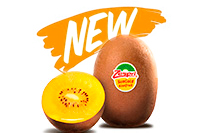 Kiwi Zespri Gold NZ