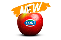 Manzana Kanzi IT